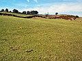 Black Hill near Keighley - geograph.org.uk - 57267.jpg