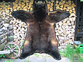 Black bear fur skin (3).jpg