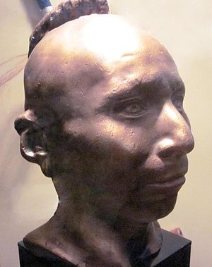 Black Hawk (Sauk leader) - Plaster life cast of Black Hawk, original ca. 1830, at Black Hawk State Historic Site