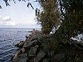 Blahovisnyi, Cherkasy, Cherkas'ka oblast, Ukraine - panoramio - юра запеченко (20).jpg