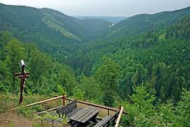 Blick-Arnsbachgrund2.jpg