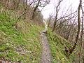 Bogenberg-Lippweg.JPG