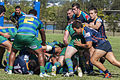 Bond Rugby (13370235725).jpg