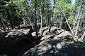Bonsai Boulders Kananaskis Alberta Canada (26649252550).jpg