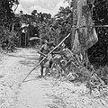 Boslandcreolen bezig met het omzagen van een boom, Bestanddeelnr 252-4867.jpg