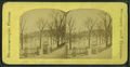 Boston Common in winter, from Robert N. Dennis collection of stereoscopic views 2.png