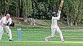 Botany Bay CC v Rosaneri CC at Botany Bay, Enfield, London 7.jpg