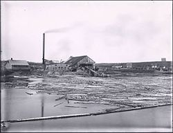 Exploits River Lumber and Pulp Company