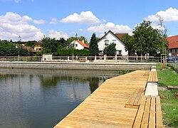 Braškov, Common Pond 2.jpg