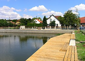 Braškov, Common Pond 2.jpg