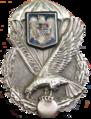 Brevetto paracadutista militare romeno.png