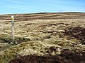 Bridleway crossroads - geograph.org.uk - 389533.jpg
