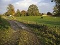 Bridleway to Northbrook - geograph.org.uk - 1602482.jpg