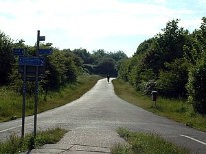 Sustrans - Sustrans' first ever route follows a disused railway through a green corridor in Bristol.
