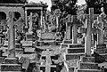 Brompton Cemetery - 13.jpg