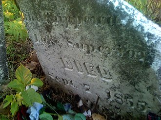 La Pointe, Wisconsin - Image: Buffalo Grave
