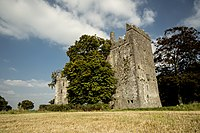 Burnchurch Castle and tower.jpg