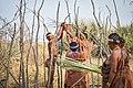 Bushmen construction.jpg