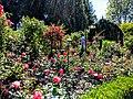 Butchart Gardens - Victoria, British Columbia, Canada (29260051925).jpg