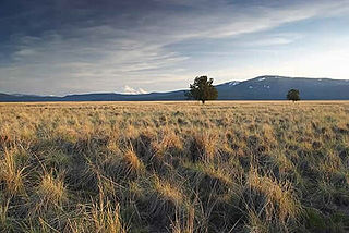 Butte Valley National Grassland