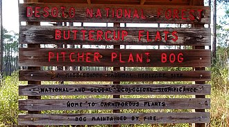 De Soto National Forest - Sign at Buttercup Flats