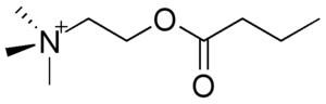 Cholinesterase - Image: Butyrylcholine