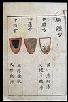 C14 Chinese tongue diagnosis chart Wellcome L0039594.jpg
