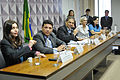 CDH - Comissão de Direitos Humanos e Legislação Participativa (23545927582).jpg