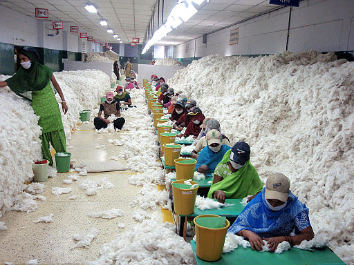 CSIRO ScienceImage 10736 Manually decontaminating cotton before processing at an Indian spinning mill