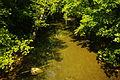 Calfkiller-river-putnam-white-line-tn1.jpg