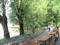 Casalmaggiore - Il fiume Po in piena.-.JPG