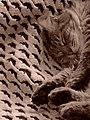 Cat n crochet.jpg