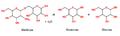 Catalización alfa-galactosidasa.png