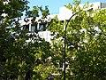 Cdad. Universitaria, Madrid, Spain - panoramio (10).jpg