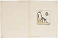 Cebus hypoleucus - 1829-1867 - Print - Iconographia Zoologica - Special Collections University of Amsterdam - UBA01 IZ20200155.tif
