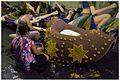 Cenografia de Carnaval 2013 (8489927896).jpg