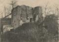 Château de la Pénissière-la-Cour.tif