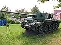 Charioteer Ps 251-29.JPG