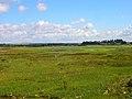 Chidham Creek - geograph.org.uk - 227828.jpg