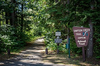 Chippewa National Forest - Image: Chippewa National Forest Social 2