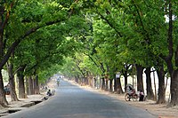 Chittagong University Road (01).jpg