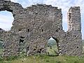 Chornokozyntsi castle ruins 06.JPG