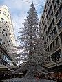 Christmas market in 2015 Deák Street. 'Silver' tree. - Budapest.JPG