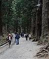 Chuson-ji (7340271620).jpg