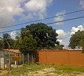 Cidade Natal - RN - panoramio (13).jpg