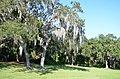 Clearwater,Florida,USA. - panoramio (128).jpg