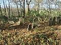 Cmentarz żydowski w Białej 6.jpg