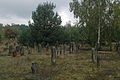 Cmentarz zydowski 1 - 640733.jpg