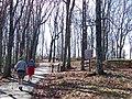 Cobb County, GA, USA - panoramio - Idawriter (19).jpg