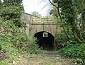 Combe Hay Railway Tunnel - geograph.org.uk - 773636.jpg